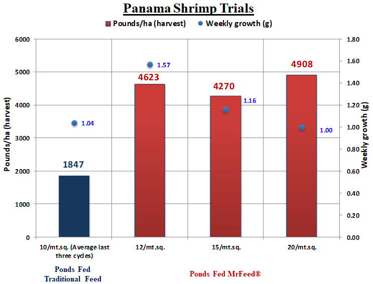 Trials in Panama showed that shrimp fed a diet including MrFeed® achieved harvest yields of 2.5 times greater than ponds fed traditional feed.  This performance was driven by the ability to achieve higher pond density and accelerated growth